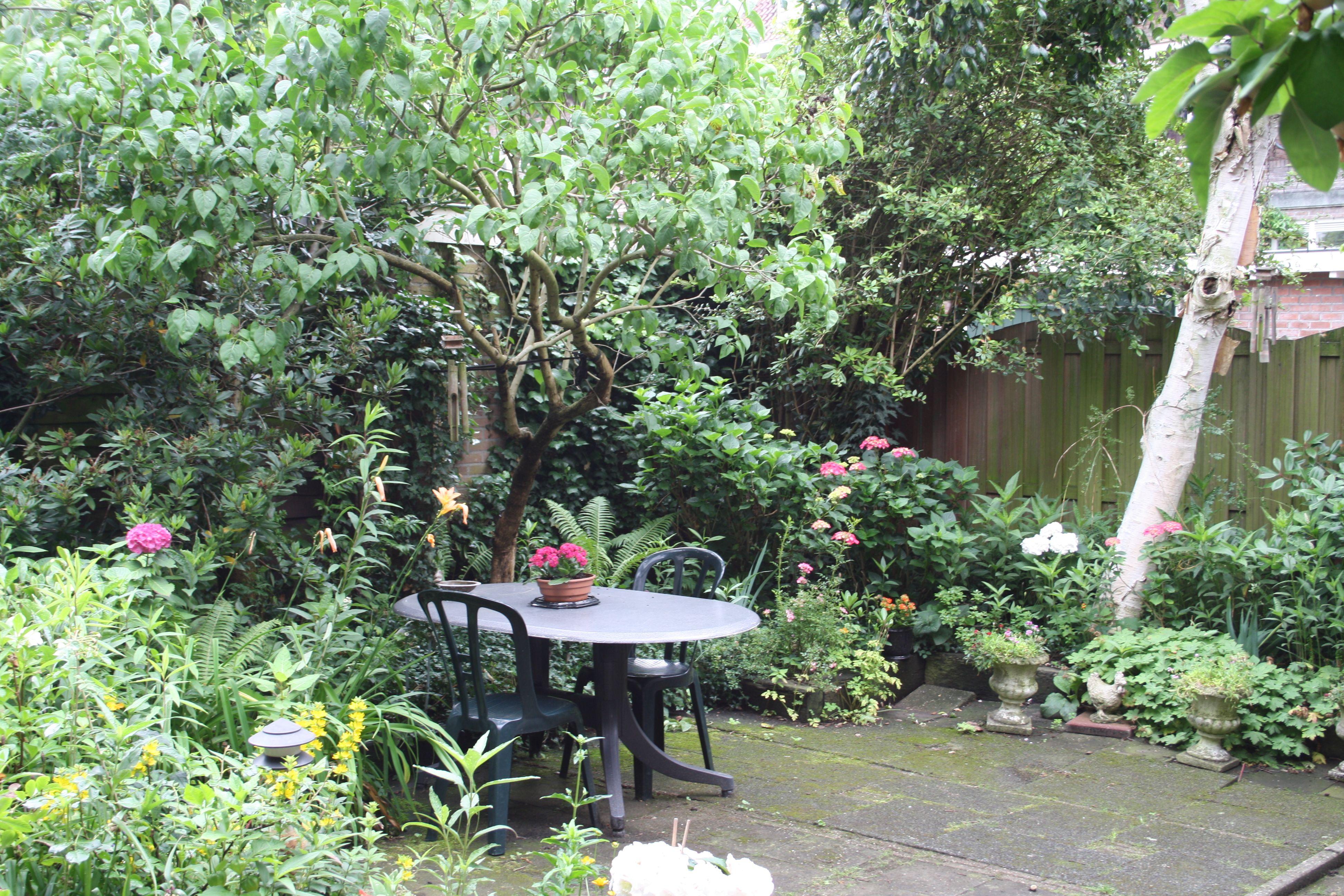 Diaconessenstraat utrecht - Deco van de tuin ...